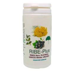 RIBE-Plus