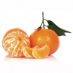 Olio Essenziale di Mandarino  10 ml
