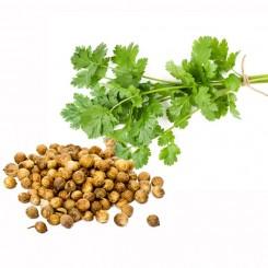 Olio Essenziale di Semi di Coriandolo  10 ml