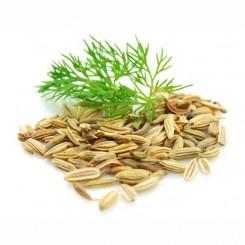 Olio Essenziale di Finocchio  10 ml