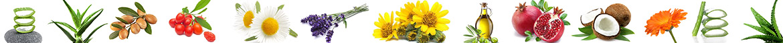ingredienti ed estratti naturali nelle preparazioni cosmetiche Naturaura
